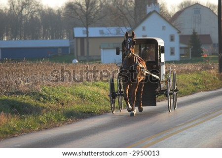 Amish horse and buggy, Chester County, Pennsylvania Dutch Country - stock photo