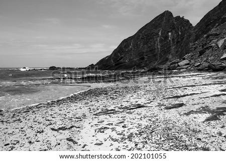 Amoreira coastline - stock photo