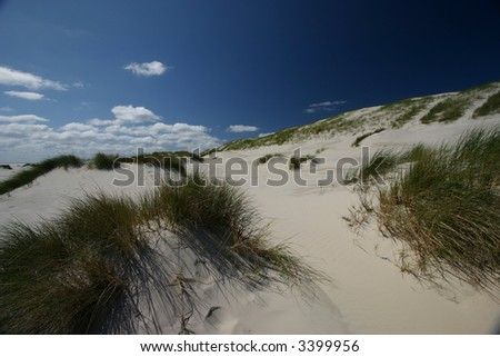 Amrum dunes - stock photo
