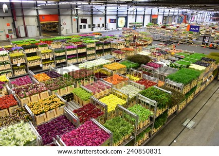 AMSTERDAM - SEPTEMBER 22: Carts of various variety of flowers staging at Aalsmeer FloraHolland, taken on September 22, 2014 in Amsterdam, Netherlands - stock photo
