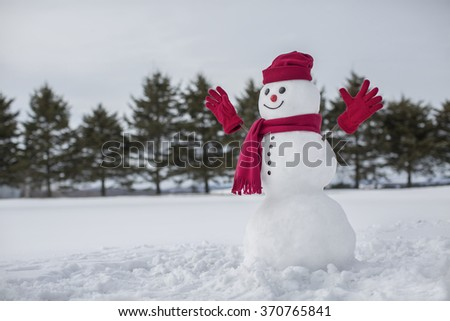 Amusing snowman in front of evergreen trees