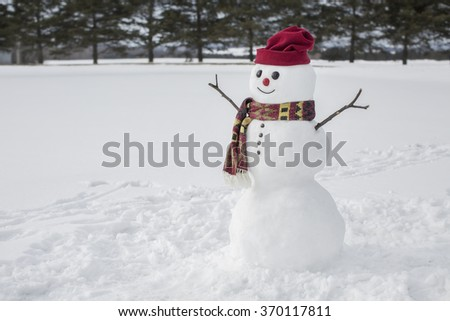 Amusing snowman in the countryside