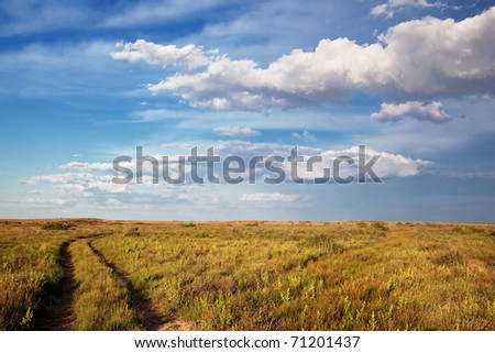 An abandoned road in the desert - stock photo
