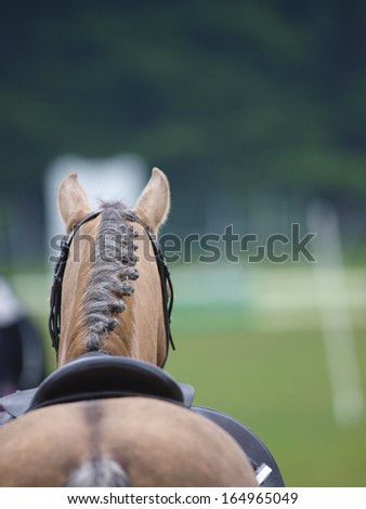 An abstract shot of a horse showing the neck and mane plaited. - stock photo