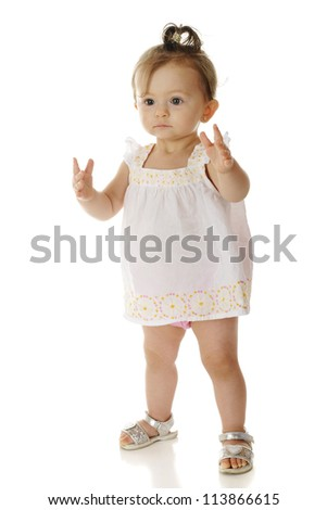 An adorable baby girl nervously standing by herself.  On a white background.