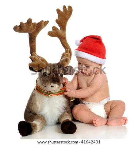 An adorable baby in Santa's hat adjusting Blitzen's collar.  Isolated on white. - stock photo