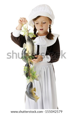 An adorable elementary Pilgrim girl admiring the catch of fish she'll be preparing for the first Thanksgiving feast.  On a white background. - stock photo