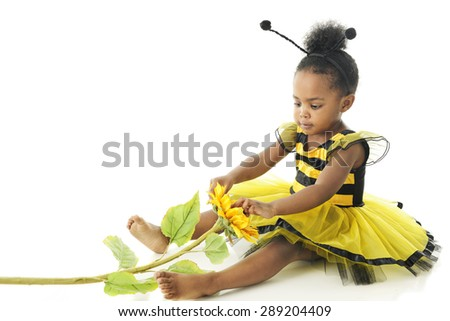 "An adorable 2 year old ""bumble bee"" playing with a sunflower.  On a white background. - stock photo"