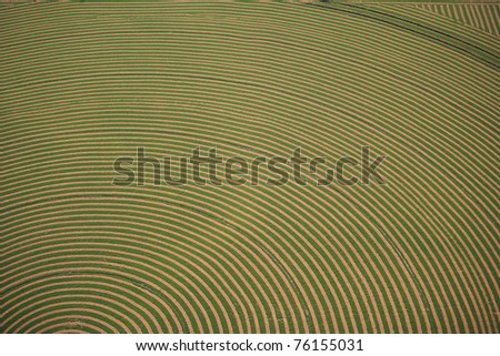 An aerial image of an alfalfa field cut and ready for baling - stock photo
