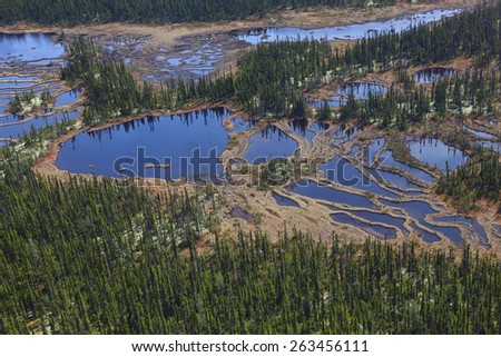An aerial view of a patterned fen found in the northern boreal forest - stock photo