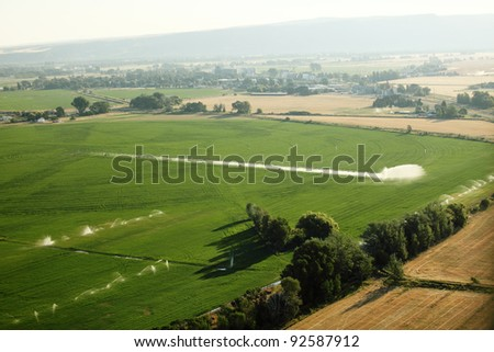 An aerial view of acres of green irrigated farmland - stock photo