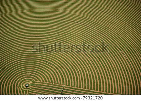 An aerial view of an freshly cut alfalfa field - stock photo