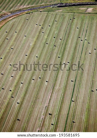 An aerial view of freshly baled hay in an alfalfa field - stock photo