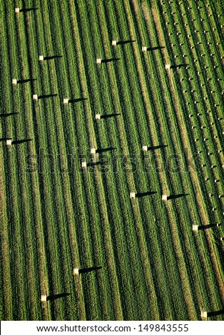 An aerial view of irrigated farmland and freshly baled hay in the field.  - stock photo