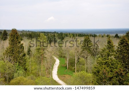 An aerial view of winding road in the woods - stock photo