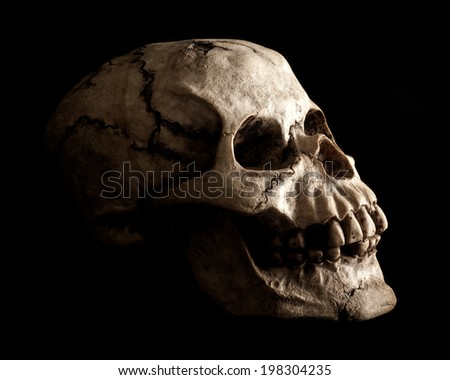 An aged and weathered looking human skull prop extruding from shadow on a black background.
