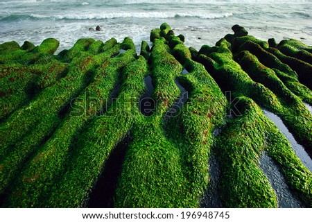 An algae-covered rocky coastline with wavy sea beyond. - stock photo