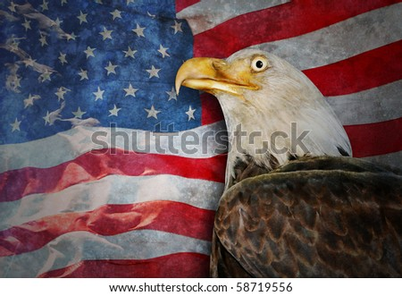 An American flag is flowing in the background and there is a bald eagle in the foreground. There is a worn, texture to the photo. Use it for a justice or law theme. - stock photo