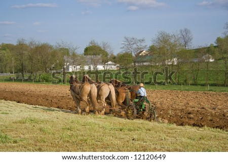 An Amish boy plowing with horses. - stock photo