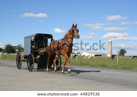 An Amish Horse Drawn  Carriage in Lancaster County, Pennsylvania - stock photo