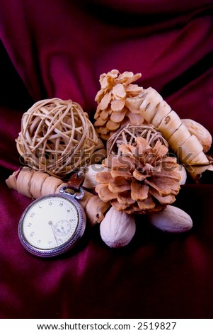 An antique pocket watch with natural objects.