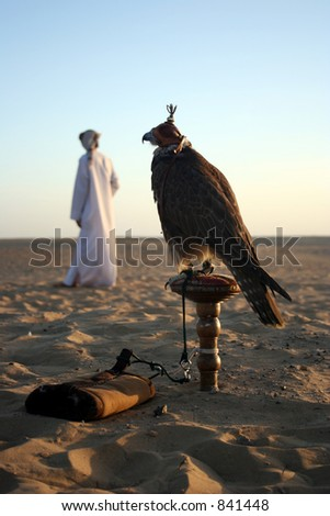 An Arab Man with his Falcon in the Desert - stock photo