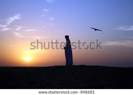 An Arabian Falconer - stock photo