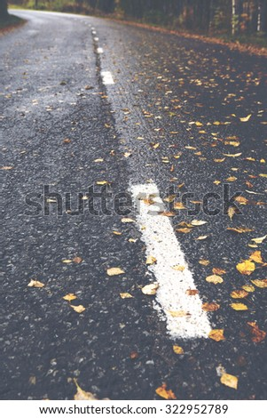 An asphalt road during autumn time. A lot of leaves are lying on the wet surface which makes road very slippery. Some white stripes are in the street. Image has a vintage effect applied.