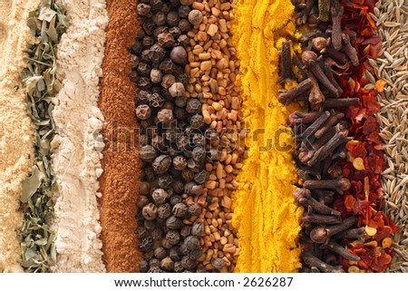 An assortment of spices used in curries. From left: ginger, methi (fenugreek leaves), garlic powder, cinnamon, black pepper, fenugreek seeds, turmeric, cloves, crushed chilies, cumin seeds. - stock photo
