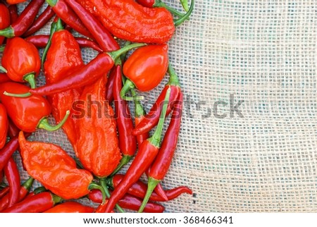An assortment of thai dragons, bhut jolokia, scotch bonnet peppers on a burlap background with room for text - stock photo