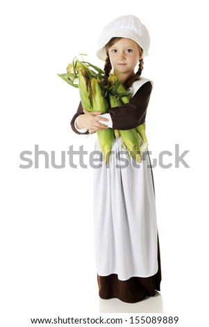 An attractive elementary girl carrying fresh corn for the first Thanksgiving.  On a white background. - stock photo