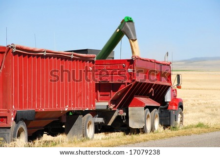 An auger loads grain into a truck for transport to storage.