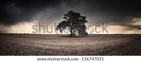 An Australian farmland panorama - stock photo
