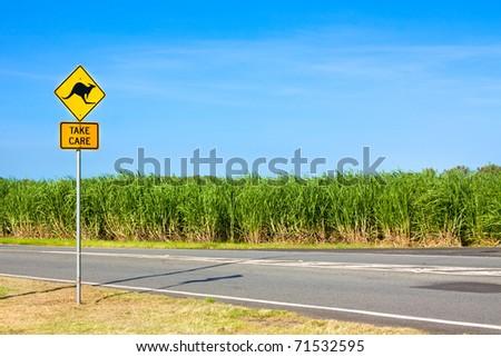 An Australian kangaroo warning sign on the side of a road - stock photo