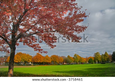 An autumn landscape - stock photo