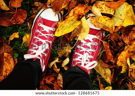 An autumn walk - stock photo