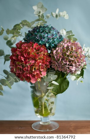 An autumnal bouquet of hydrangeas on a  table - stock photo