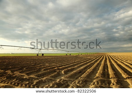 An early morning view of a freshly planted farm field irrigated with a  center pivot  sprinkler system. - stock photo
