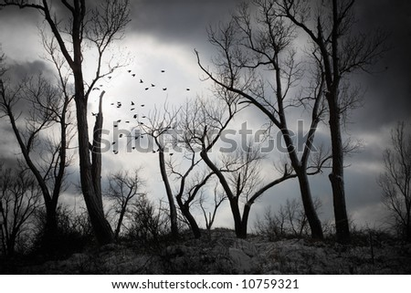 An eerie night - stock photo