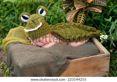 An eight day old newborn baby boy wearing a green alligator costume. He is sleeping in a crate that's placed outside in lush foliage. - stock photo