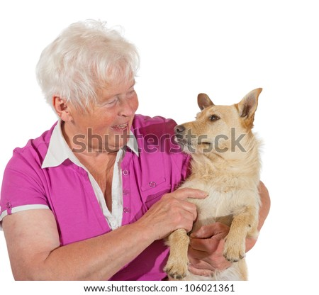 An elderly grey-haired woman smiles lovingly at her jack russel terrier as she holds him in her arms, studio portrait isolated on white - stock photo