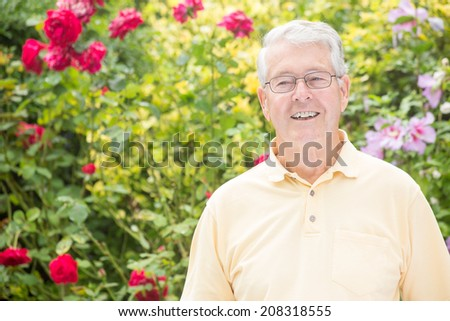 An elderly man is smiling to the left of the camera with a beautiful red rose background - stock photo