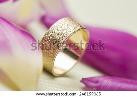 An elegant textured gold wedding band or ring standing upright amongst scattered fresh pink rose petals symbolic of love romance and marriage vows for a lifelong commitment - stock photo