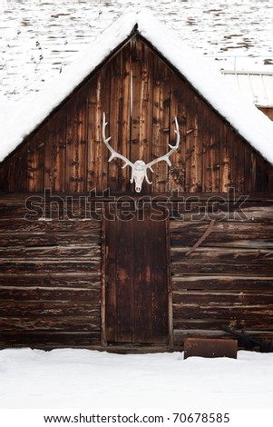 An elk skull with large antlers on an old, rustic wooden cabin, in the snow. - stock photo