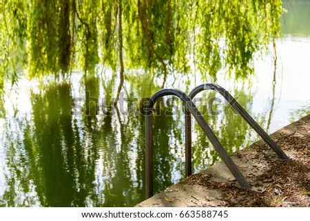 An emergency escape ladder on the dock of a river with a weeping willow tree in the background.
