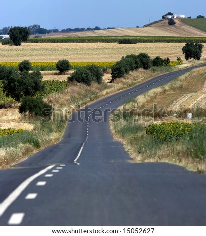 An empty country road in a summer day. - stock photo
