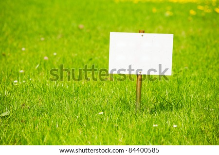 An empty plate for text on a bright green grass