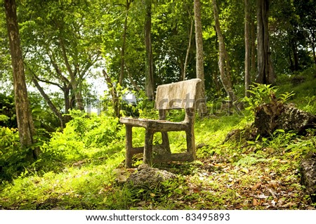 An empty seat in a fantasy forest
