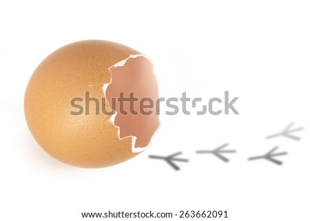 An empty shell, broken egg with traces of chicken and cartoon faces - stock photo