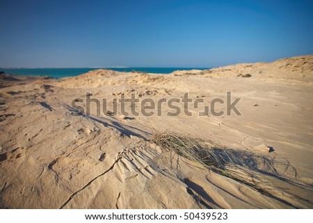 An eroded sandstone beach on the edge of the desert at the northern coast of Qatar in the Middle East, Persian Gulf - stock photo